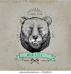 Vintage  Bear logo. Design for t-shirt apparel print fashion design, graphic tee, vector illustration of bear on surfboard.