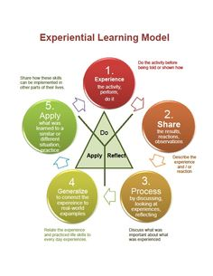 An infographic of the stages that are included in the process of Experiental Learning Method. Train Activities, Therapy Activities, Educational Activities, Museum Education, Work Train, Learning Methods, Experiential Learning, Training And Development, Critical Thinking Skills