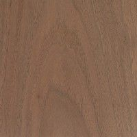 This web site is our go-to site for wood questions about its working properties, if a wood is on the endangered list, what it will look like, and a bunch more. Juglans Nigra, Woodworking Finishes, Wand Woods, Brown Aesthetic, Wood Worker, Home Design Decor, Walnut Wood, Pyrography, Wood Species