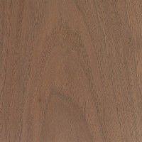 Black Walnut (Juglans nigra)  Allanis's wand wood
