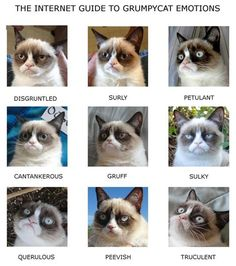 Random Funny Pictures – 42 Pics