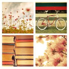 My life in a nutshell: A bike and books on a beautiful day.