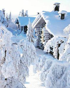 Image de landscape, snow, and travel Winter Szenen, I Love Winter, Winter Magic, Winter Christmas, Winter Fairy, Father Christmas, I Love Snow, Snowy Day, Snow Scenes