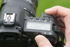 tip: back button focusing ~ use the AF button ~ 0 killer photography tips the pros won't tell you ~ photography