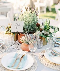 Multifaceted table centers as the final touch for the wedding decoration - Greenery Wedding - Cactus Succulent Wedding Centerpieces, Cactus Wedding, Wedding Table Decorations, Botanical Wedding, Table Centerpieces, Wedding Flowers, Wedding Plants, Potted Plant Centerpieces, Potted Plants