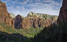 Vue de puis le Kayenta Trail / Zion National Park