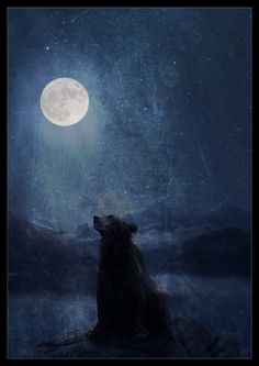 """""""As a bear he ranges far and wide. I once saw him sitting all alone on the top of the Carrock at night watching the moon sinking towards the Misty Mountains, and I heard him growl in the tongue of bears."""" -J.R.R. Tolkien (art by LadyElleth on deviantART)"""