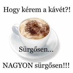 Coffee Love, Tea Time, Tableware, Funny, Doterra Oil, Food, Comedy, Memes, Google
