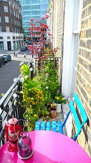 Plants on a Balcony Railing? Protecting Plants on a Balcony Railing?Protecting Plants on a Balcony Railing? Small Balcony Design, Small Balcony Garden, Balcony Plants, Balcony Ideas, Narrow Balcony, Small Balconies, Outdoor Balcony, Apartment Balcony Decorating, Apartment Balconies