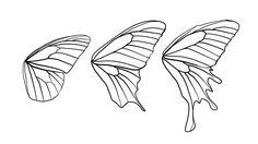 butterfly wing shapes | drawingbutterfly_8-2_design_shape