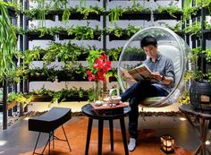 Apostrophy's, Bangkok, vertical garden, green architecture, town house, green interior, natural light, moonroof, plant fertilization, UV lamps, local design, local artwork