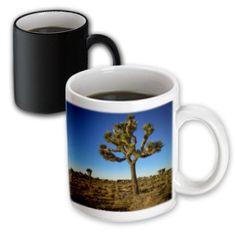 3dRose Joshua Tree, Magic Transforming Mug, 11oz