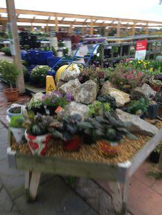 Wyevale - Bridgemere - Garden Centre - Garden Retail - Layout - Landscape - Lifestyle - Customer Journey - Fixtures - Fittings - Visual Merchandising - www.clearretailgroup.eu