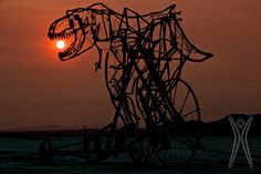 T-Rex at Sunrise