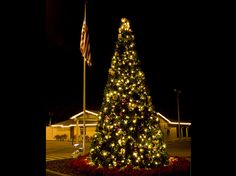 Miller Lights decorates many hotels, town centers, restaurants, Housing developments and resorts for the holidays.  This is a tree we decorated at a club house .  Click on pin to find out about our services.