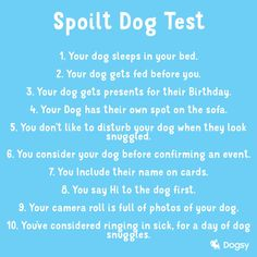 What did you score? 😆 Dog Test, Sleeping Dogs, Your Dog, Fans, Followers, Dog Sleeping