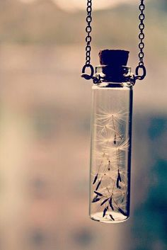 Because Magic is everywhere <3 ~ #Saving Wishes Brilliant wedding wish favor