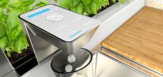 The smart faucet in GE's Home 2025 not only dispenses filtered water, but also ice and carbonated water, vitamins, and various beverages. J...