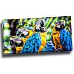 Parrot Social Canvas Wall Art Print