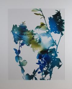 James Welling - Photograph