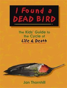 I Found a Dead Bird: The Kids Guide to the Cycle of Life and Death by Jan Thornhill 1897066708 9781897066706 Cycle Of Life, Life Cycles, Lending Library, Life Affirming, Natural Curiosities, Life And Death, Used Books, Grief, The Book
