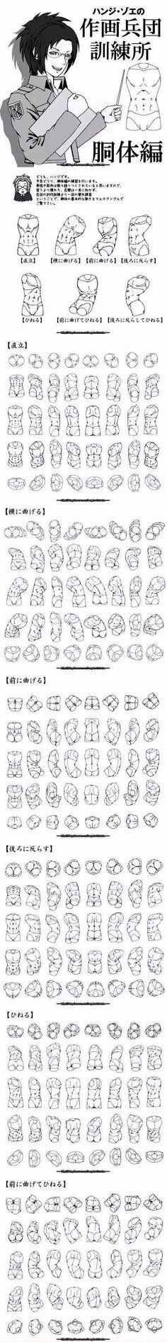 【人体教材】女性人体结构的参考合集~推荐给大家~ -- 原画梦 -- 传送门 (440x3531)