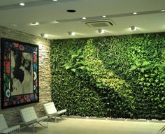 Vida-EcoVerde : Jardines Verticales para Decoración / Gwall