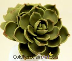 3 Succulents  Cold Porcelain Art  Made to by ColdPorcelainArt, $90.00