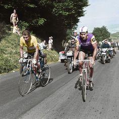 Tour de France 2015 Poulidor