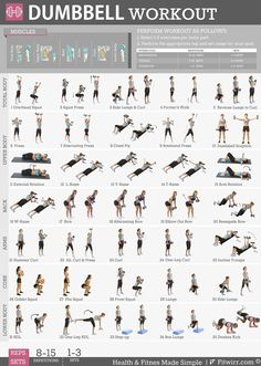 Fitwirr Dumbbell Workout Poster: 19X27 Dumbbell Exercises Poster - Home, Gym…