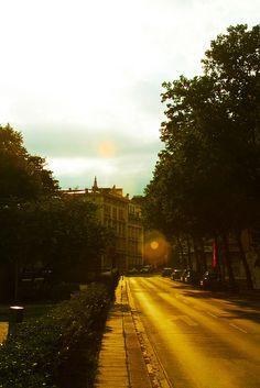 Una tarde llegando a Viena Arriving to Vienna- Holidays - 2012