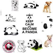 panda stuff - Google Search