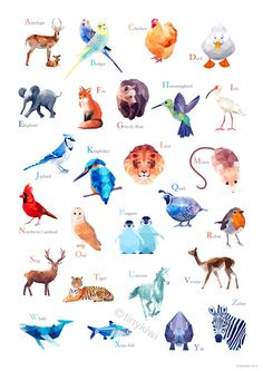 ABC Poster Alphabet wall art abc animals Kid's by tinykiwiprints