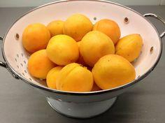 Meruňky, zavařování bez cukru.