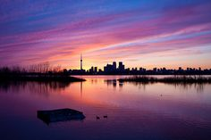 Riverdale Park - The 10 most breathtaking views of Toronto Most Beautiful Cities, Beautiful Sky, Canoe Restaurant, Toronto City, Purple Sunset, Peaceful Places, Night City, Nature Photos, Nice View