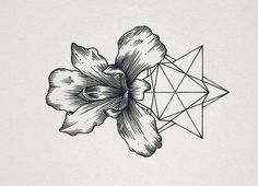 Picture   geometric   abstract   flower
