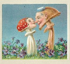 Antique vintage anthropomorphic mushroom postcard--two mushroom lovers Vintage Cards, Vintage Postcards, Vintage Images, Arte Hippy, Botanical Illustration, Illustration Art, Vintage Seed Packets, Mushroom Art, Conte
