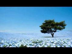Feeling Well Tv - Pleiadian Message #7 - YouTube