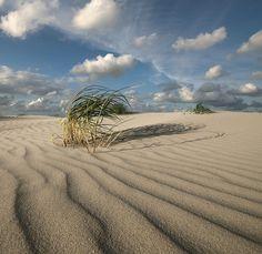 Wild Beach...The beach of Schiermonnikoog, a Dutch island.