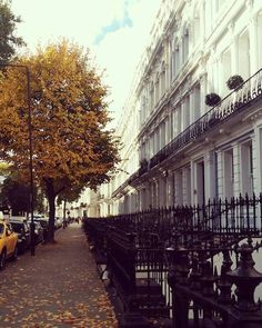 autumn in notting hill