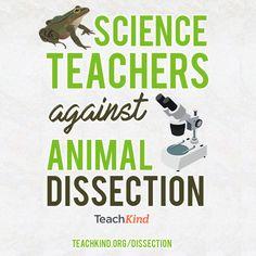 #teachkindness #scienceteachers