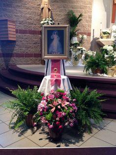 Divine Mercy Sunday 2014 SJC