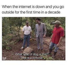 Internet Down Time http://onlineclock.net/bg/nature/ #Tortoise #Dogs #Pet #Dogstagram #Pets #DogOwners #DogsOfficialDog #DogsOnInstagram #FunnyAnimals #Doggo #DogsOfInstagram #DogLovers #DogsLover #DogsAreBetterThanPeople #DogsOfInsta #PetSitter #DogsLover #Animals #Turtle #Turtles #Turtlegram