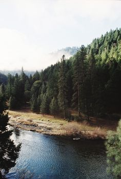 The Trinity River in Trinity County \\ TAYLOR MCCUTCHAN