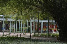 Parque Municipal de Belo Horizonte - Refúgio para a fauna silvestre, o espaço abriga aproximadamente 50 espécies de aves. Foto: Pedro Vilela