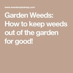 Garden Weeds: How to keep weeds out of the garden for good!