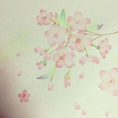 【cca.ss410】さんのInstagramをピンしています。 《練習#イラスト #絵 #水彩色鉛筆#桜#水彩色鉛筆レッスン帖》