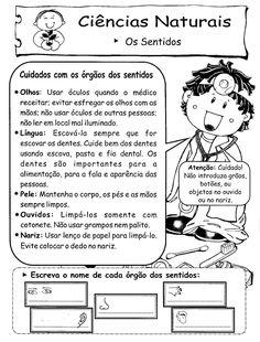 ♥Sugestão De Atividade Escolar♥: Atividades - Orgãos dos Sentidos