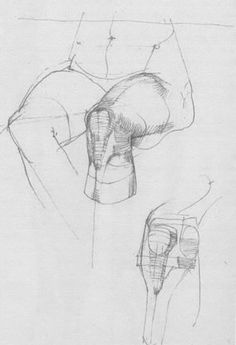 A wonderful book: Die Gestalt des Menschen by Gottfried Bammes Anatomy Sketches, Anatomy Drawing, Anatomy Art, Human Anatomy, Drawing Sketches, Art Drawings, Anatomy Study, Drawing Legs, Body Drawing