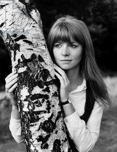 """janeashersource: """"English actress Jane Asher, August 1968. Bridgeman Images. """""""